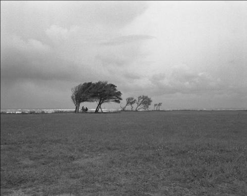 Ile d'Oleron -1 - 1998